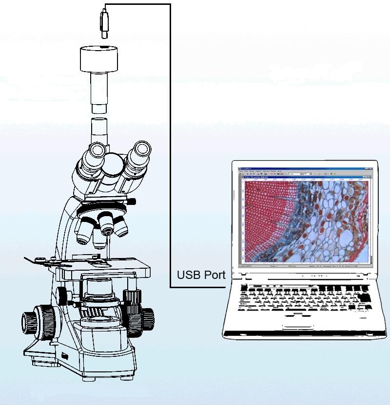 Описание: Видеоокуляр установлен на тринокулярный микроскоп.jpg